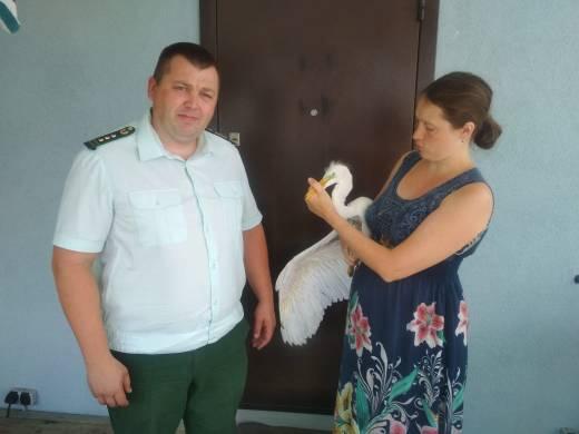 Фото: Комитет по животному миру Ленинградской области